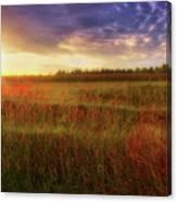 Summer Sunset - Waukesha Wisconsin  Canvas Print