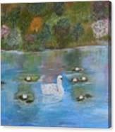 Summer Swan Canvas Print