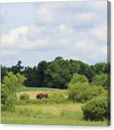 Summer Tractor In Field Corinna Maine Canvas Print