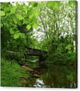 Summer Woodland And The Patapsco River Maryland Canvas Print