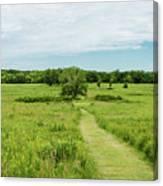 Summer's Day On The Prairie Canvas Print