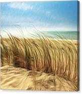 Summertime Blues Canvas Print