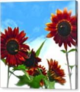 Summertime Memories Canvas Print