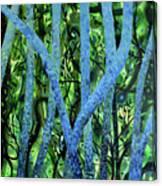 Summertree Fantasia Canvas Print