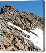 Summiting The Mount Massive Summit Canvas Print