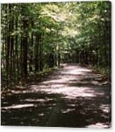 Sun And Shadow Road In Summer  C3pdl Canvas Print