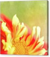 Sun Dancing Canvas Print