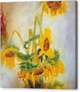 Sun Flowers No.2 Canvas Print