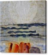 Sun Fog Rocks Canvas Print
