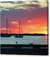 Sun Gazing Canvas Print