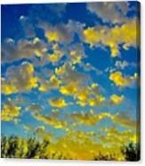 Sun Kisses Canvas Print