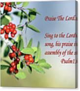 Sun Lite Pyrocanthia Berries Ps. 150 V 1 Canvas Print