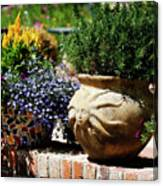 Sun Pot Canvas Print