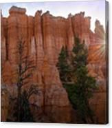 Sun Rising In Bryce Canyon Canvas Print