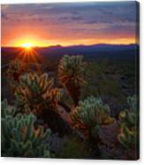 Sun Sets Over The Sonoran  Canvas Print
