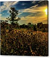 Sun Setting At Valley Forge Canvas Print