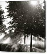 Sun Showers Canvas Print
