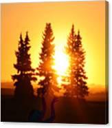 Sun Sorceress Canvas Print