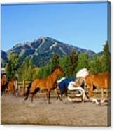 Sun Valley Stables Canvas Print