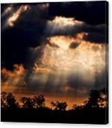 Sunbeam Canvas Print