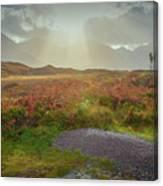 Sunbeams #g9 Canvas Print