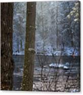Sunbreak On A Snowy Day Canvas Print
