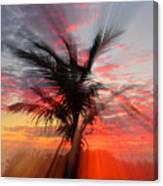 Sunburst Through Palm Tree Canvas Print