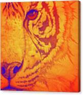Sunburst Tiger Canvas Print