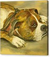 Sunday Arts Fair Dog In A Mood Canvas Print