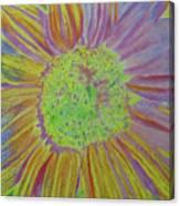 Sundelicious Canvas Print