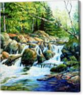 Sunfish Creek Canvas Print