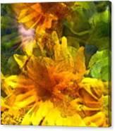 Sunflower 6 Canvas Print
