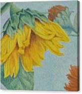 Sunflower Buddies Canvas Print