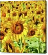 Sunflower Edges Canvas Print