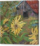 Sunflower Farm Canvas Print