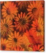 Sunflower Field 1.2 Canvas Print