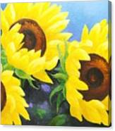 Sunflower Foursome Canvas Print
