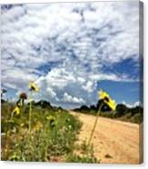 Sunflower Hitchhikers Canvas Print