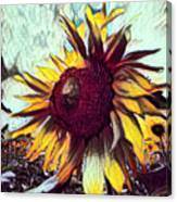 Sunflower In Deep Tones Canvas Print