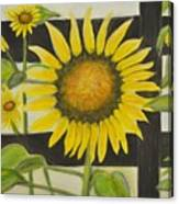 Sunflower In Your Face Canvas Print