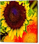 Sunflower Joy Canvas Print