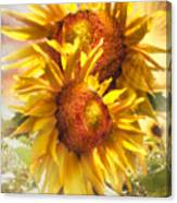 Sunflower Light Canvas Print
