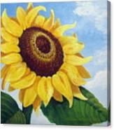 Sunflower Moment Canvas Print