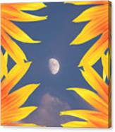 Sunflower Moon Canvas Print