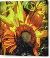 sunflower No. 1 Canvas Print
