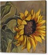 Sunflower Nod Canvas Print