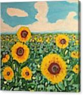 Sunflower Serendipity Canvas Print