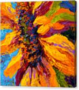 Sunflower Solo II Canvas Print