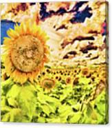 Sunflower Storm Canvas Print