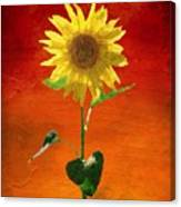 Sunflower Summer  Canvas Print
